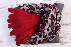 女子般地的羊毛衣裳为在土气委员会的冬天 库存图片