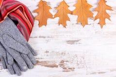 女子般地的羊毛衣裳和秋季叶子有拷贝空间的文本的,老土气木背景 免版税库存图片