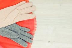 女子般地的衣裳为秋天或冬天,温暖的服装概念,文本的地方 免版税库存图片