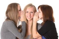 女学生联系 免版税库存照片