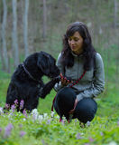 女孩与狗坐草甸 免版税图库摄影