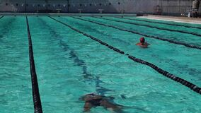 女孩严谨地在接踵而来的体育运动游泳竞赛的蛙泳被训练 活动公共 影视素材