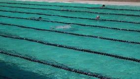 女孩严谨地在接踵而来的体育运动游泳竞赛的蛙泳被训练 活动公共 股票视频