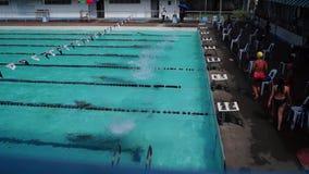 女孩严谨地在接踵而来的运动游泳竞赛的适当的体育潜水被训练 活动公共 股票视频