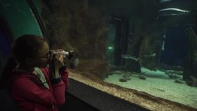 女孩为五颜六色的水下的世界股票英尺长度录影照相 影视素材