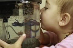 女孩亲吻了她心爱的Betta Flish 免版税库存照片