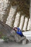 女孩位于的结构树 免版税图库摄影