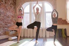 女孩体操 少年瑜伽类 库存照片