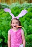 女孩佩带的兔宝宝耳朵用在她的嘴的红萝卜 免版税图库摄影