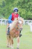 女孩佩带的太阳镜坐小马 免版税图库摄影