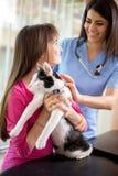 女孩使她在兽医诊所的病的猫镇静下来 免版税库存图片