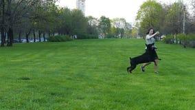 女孩使用与一条狗在公园 影视素材