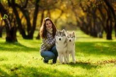 女孩使用与她的在下落的秋叶的狗 免版税库存照片