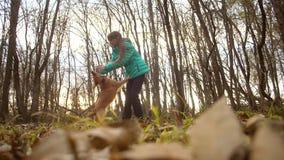 女孩使用与她的狗在一个秋季金黄公园 股票视频