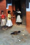 女孩农村的印度 库存照片