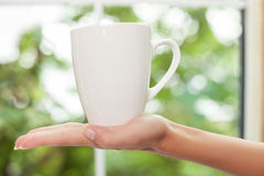 女孩准备喝咖啡 图库摄影