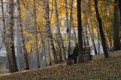 女孩单独坐在山坡的一条长凳在老城市公园 图库摄影