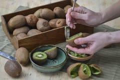 女孩吃着与茶点心用匙的成熟猕猴桃 果子的示范 库存照片