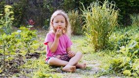 女孩吃着草莓并且看照相机坐草 库存照片