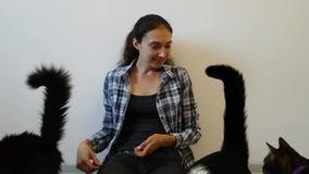 女孩和三只猫 帮助无家可归的动物-动物庇护所 志愿关心对动物 从通信的心情与宠物 股票视频