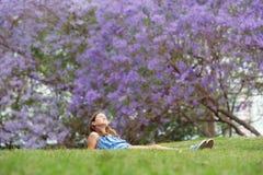 女孩和兰花楹属植物树 免版税库存照片