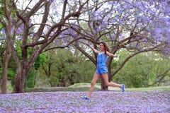 女孩和兰花楹属植物树 库存照片