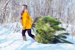 女孩和冷杉木 免版税库存照片