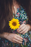 女孩和向日葵 库存照片