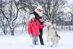女孩和她的妈妈在冬天喂养一条多壳的狗 库存图片
