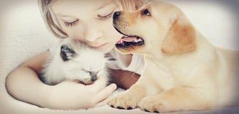 女孩和小猫和小狗 免版税库存图片