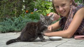 女孩和小猫 影视素材