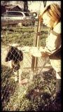女孩和山羊 免版税库存照片