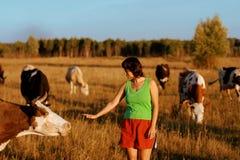 女孩和母牛牧群  免版税库存图片