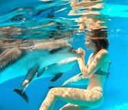 女孩和海豚 库存图片