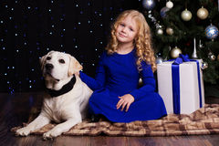 女孩和狗在家在圣诞树附近 免版税库存图片