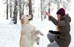 女孩和狗在森林走在冬天 免版税图库摄影