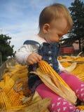 女孩和玉米 图库摄影