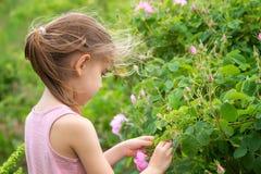 女孩和玫瑰 免版税库存图片