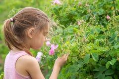 女孩和玫瑰 图库摄影