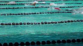 女孩和男孩严谨地在接踵而来的运动游泳竞赛的自由式被训练 活动公共 股票录像