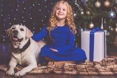 女孩和白色拉布拉多狗,圣诞节概念 免版税库存图片