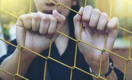 女孩和笼子 免版税图库摄影