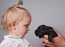 女孩和观看在彼此的小狗 库存图片