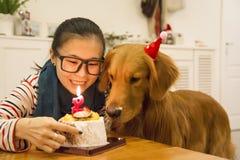 女孩和金毛猎犬生日 免版税库存图片