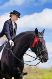 女孩和驯马马 免版税库存照片