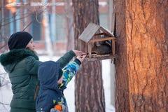 女孩哺养的灰鼠在冬天森林里 免版税库存图片