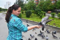 女孩哺养的鸽子 免版税库存图片