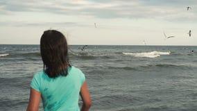 女孩喂养在海岸的海鸥 股票视频