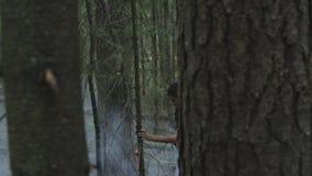 女孩在一个神奇有雾的森林里 影视素材