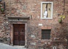 女孩在一个窗口里在锡耶纳 免版税库存图片